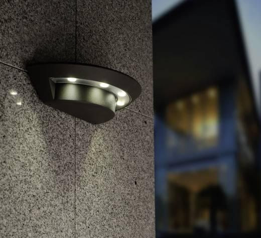LED-Außenwandleuchte 12 W Neutral-Weiß ECO-Light LED-Design Leuchte Evans 1863 GR EVANS Anthrazit