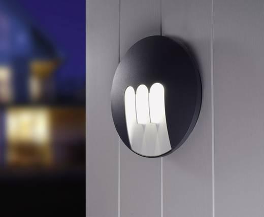 ECO-Light MASK 1871 GR LED-Außenwandleuchte 9 W Neutral-Weiß Anthrazit