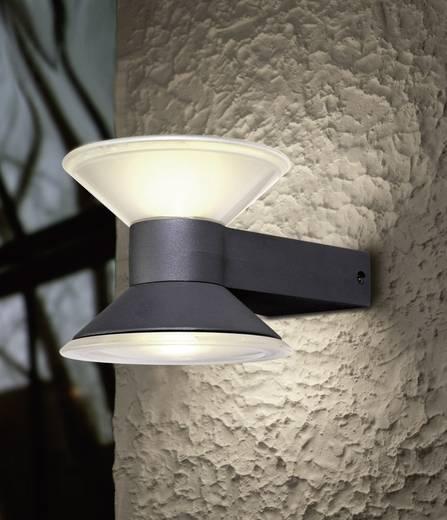 LED-Außenwandleuchte 6 W Neutral-Weiß ECO-Light Design Leuchte CONE 1877 S GR Anthrazit