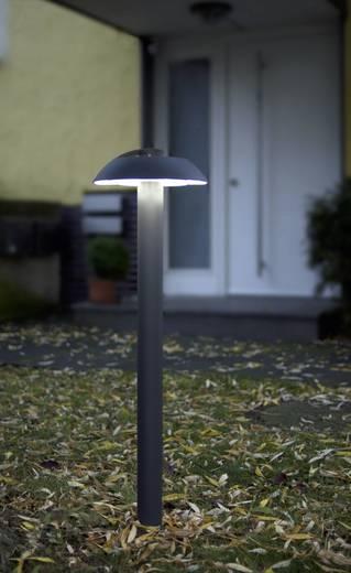 LED-Außenstandleuchte 24 W Kalt-Weiß ECO-Light 2252 M-950 GR Spril Anthrazit