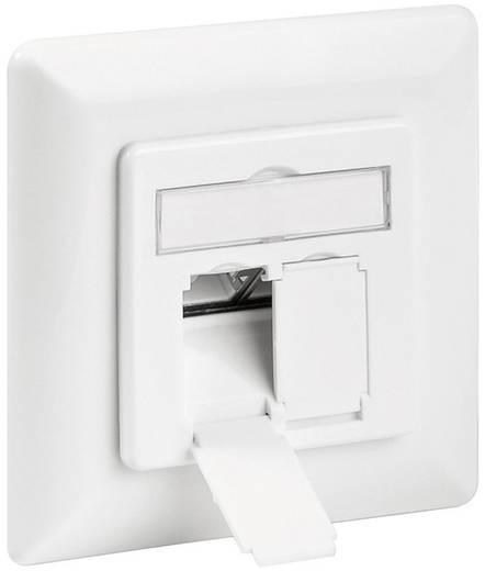 Netzwerkdose Unterputz Einsatz mit Zentralplatte und Rahmen CAT 6a Goobay 68721 Weiß