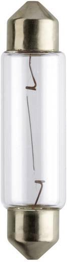 Soffitten Leuchtmittel Philips Standard C10W 10 W