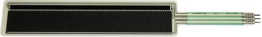 Drucksensor 1 St. IEE CP29 (FSR155AS) 1.1 kg bis 1.1 kg (L x B x H) 114 x 25 x 2 mm
