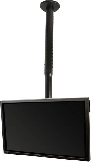 """TV-Deckenhalterung 81,3 cm (32"""") - 127,0 cm (50"""") Neigbar B-Tech BT8426/B"""