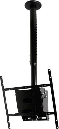 """B-Tech BT8426/B TV-Deckenhalterung 81,3 cm (32"""") - 127,0 cm (50"""") Neigbar"""