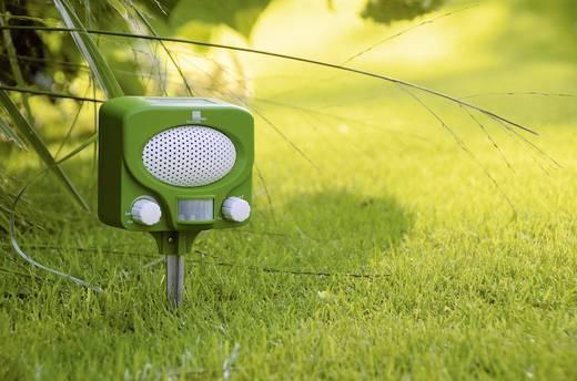 Tiervertreiber Swissinno Solar UTV outdoor Multifrequenz Wirkungsbereich 100 m² 1 St.