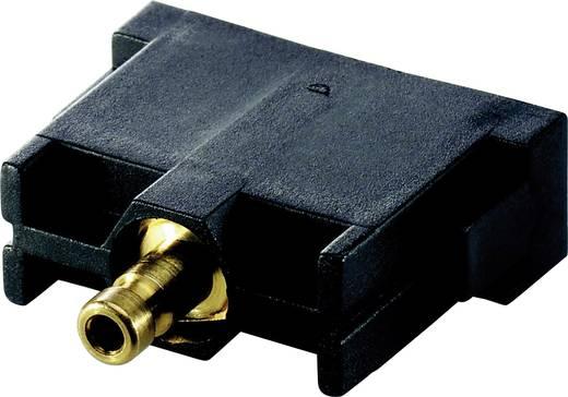 Stiftmodul EPIC® MC 44424004 LappKabel Gesamtpolzahl 1 10 St.