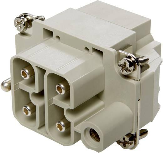 Buchseneinsatz EPIC® Power H-S 10407910 LappKabel Gesamtpolzahl 4 + PE 10 St.