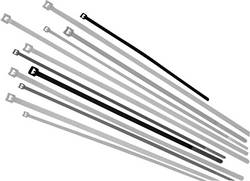 Serre-câbles 3.60 mm x 290 mm naturel LappKabel 61831007 crantage intérieur 500 pc(s)