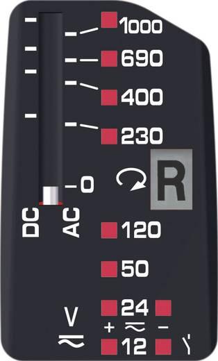 Benning DUSPOL analog Zweipoliger Spannungsprüfer, 12 V - 1000 V AC/ DC LED CAT IV 600 V / CAT III 1000 V