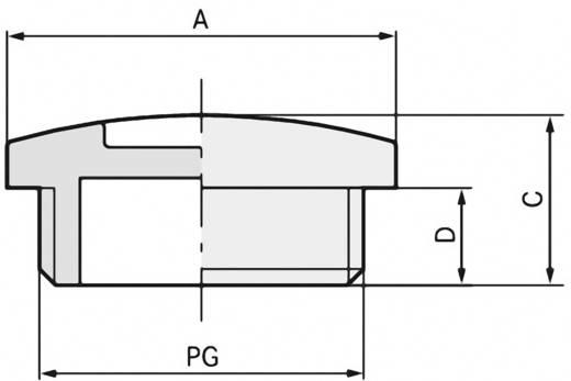 Verschlussschraube PG9 Polystyrol Licht-Grau (RAL 7035) LappKabel SKINDICHT BLK-GL PG9 RAL 7035 LGY 100 St.