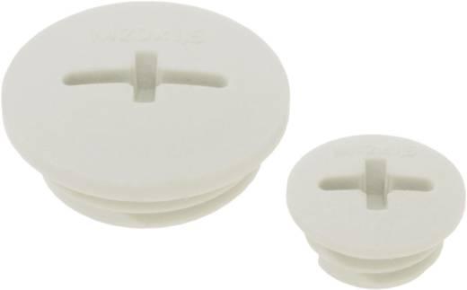 Verschlussschraube M50 Polyamid Silber-Grau (RAL 7001) LappKabel SKINDICHT BLK-GL-M 50X1,5 SGY 25 St.