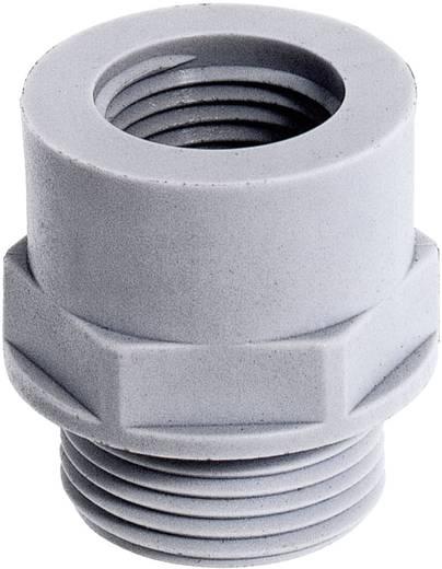 Kabelverschraubung Erweiterung PG16 PG21 Polyamid Licht-Grau (RAL 7035) LappKabel SKINDICHT EKU PG 16/21 25 St.