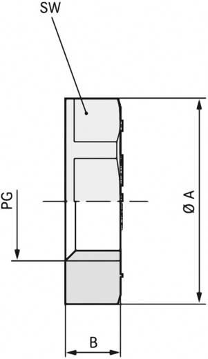 Gegenmutter PG42 Polystyrol (EPS) Licht-Grau (RAL 7035) LappKabel SKINDICHT GMK PG 42 RAL 7035 LGY 25 St.