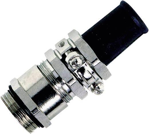Kabelverschraubung M25 Messing Messing LappKabel SKINDICHT® SRE-M 25X1,5/21/19/15 25 St.