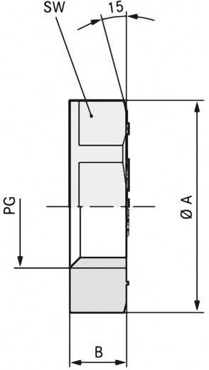 Gegenmutter PG42 Polyamid Schwarz (RAL 9005) LappKabel SKINTOP GMP-GL PG 42 RAL 9005 BK 25 St.