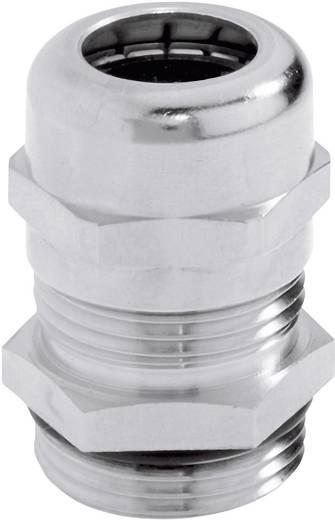 Kabelverschraubung PG42 Messing Messing LappKabel SKINTOP® MS PG 42 5 St.