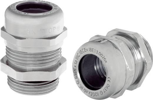 Kabelverschraubung M25 Messing Natur LappKabel SKINTOP MS-M 25X1,5 ATEX XL 25 St.