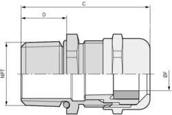 Kabelová průchodka LAPP SKINTOP® MS-NPT 1'' mosaz, délka závitu 15 mm, mosaz, 25 ks