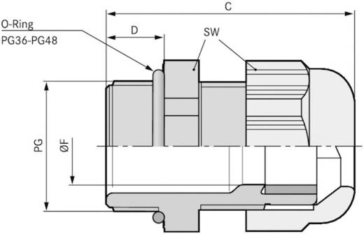 Kabelverschraubung PG48 Polyamid Licht-Grau (RAL 7035) LappKabel SKINTOP® ST PG 48 5 St.