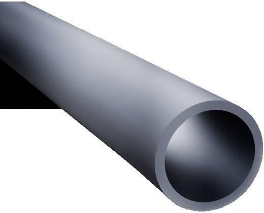 Tragprofil Stahl Licht-Grau (RAL 7035) (Ø x L) 48.3 mm x 1000 mm Rittal CP 6501.020 1 St.