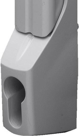 Komfortgriff für Profilhalbzylinder Grau (RAL 7035) Rittal TS 8611.070 1 St.