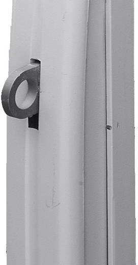 Komfortgriff Grau (RAL 7035) Rittal TS 8611.290 1 St.