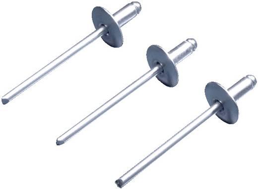 Niete Aluminium (Ø) 4.5 mm Rittal TS 8800.531 100 St.