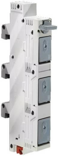 Reitersicherungselement Polyamid Grau (RAL 7035) (B x H) 27 mm x 226 mm Rittal SV 9340.950 3 St.