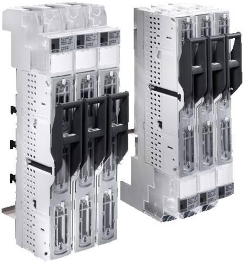 Sicherungslasttrenner 690 V/AC Rittal SV 9346.010 1 St.