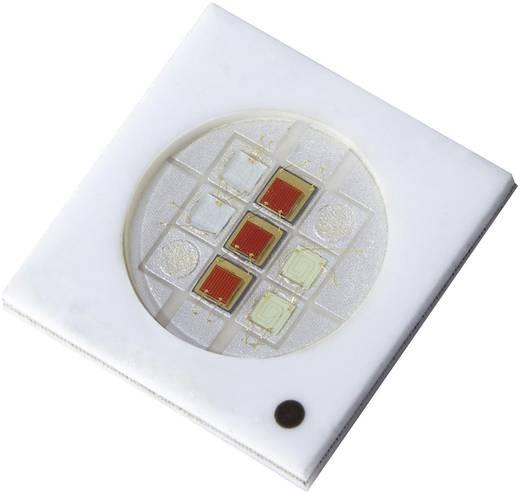 SMD-LED Sonderform Grün 120 ° 1000 mA 10.4 V Kingbright KT-1213WG9SX9/10