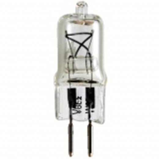 walimex Einstelllicht KH-100M/KH-150M, 50W 14753 Walimex