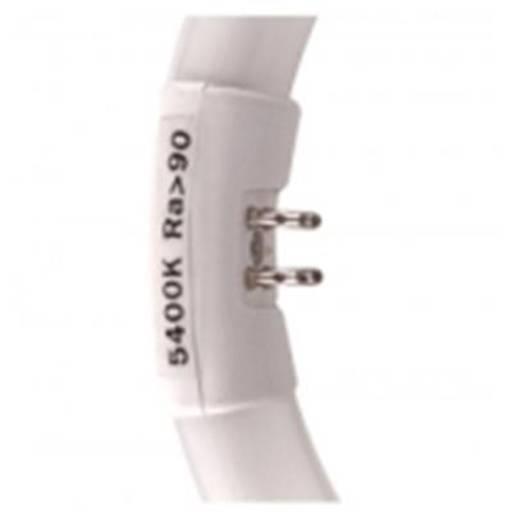 walimex Ersatzlampe für Ringleuchte 40W 15324 Walimex