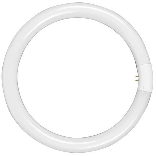 walimex Ersatzlampe für Ringleuchte 75W 18526 Walimex