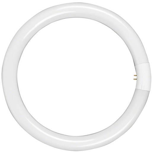 Ringlicht Walimex Leuchtmittel für Beauty Ringleuchte, 40W