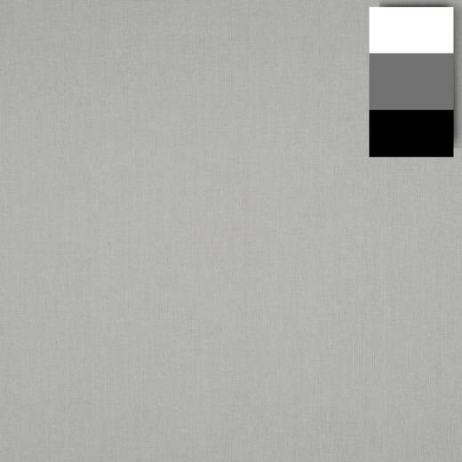 Stoffhintergrund Walimex (L x B) 6 m x 2.85 m Platin