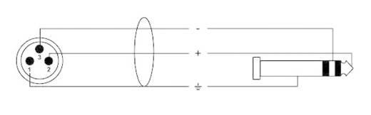 XLR Adapterkabel [1x XLR-Stecker - 1x Klinkenstecker 6.35 mm] 6 m Schwarz Cordial CFM6MV