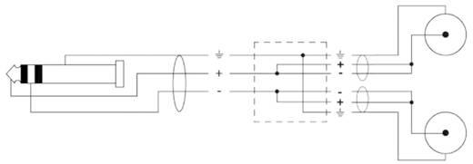 Audio Adapterkabel [1x Klinkenstecker 3.5 mm - 2x Cinch-Stecker] 3 m Schwarz Cordial