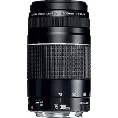 Canon EF DC 4,0-5,6/75-300 III