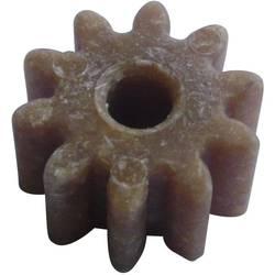Holz, Kunststoff Zahnrad Modelcraft Modul-Typ: 1.0 Anzahl Zähne: 10 1 St.