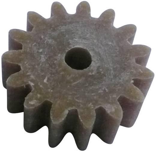 Holz, Kunststoff Zahnrad Modelcraft Modul-Typ: 1.0 Anzahl Zähne: 15 1 St.