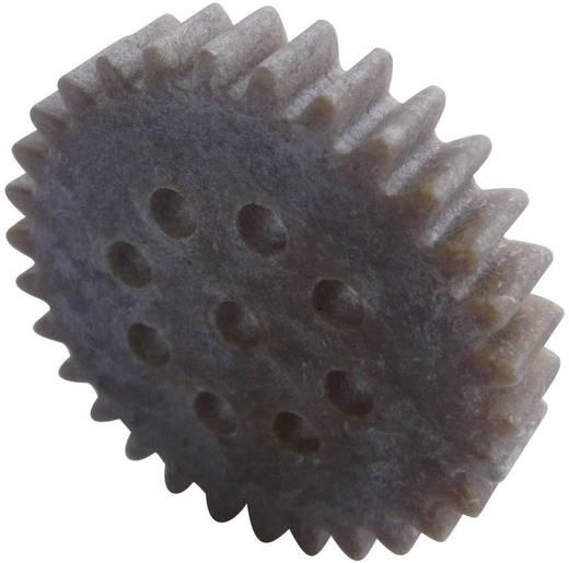 Holz, Kunststoff Zahnrad Modelcraft Modul-Typ: 1.0 Anzahl Zähne: 30 1 St.