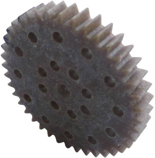 Holz, Kunststoff Zahnrad Modelcraft Modul-Typ: 1.0 Anzahl Zähne: 40 1 St.