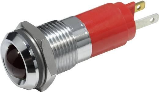 LED-Signalleuchte Rot 12 V/DC CML 19210250