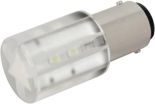 LED-Lampe BA15d Kalt-Weiß 24 V/DC, 24 V/AC 1400 mcd CML 1856035W