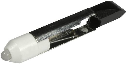 LED-Lampe T6.8 Kalt-Weiß 12 V/DC, 12 V/AC 1800 mcd CML 1507525W3