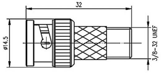 BNC-Adapter BNC-Stecker - F-Buchse Telegärtner J01008A0023 1 St.