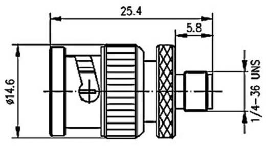 BNC-Adapter BNC-Stecker - SMA-Buchse Telegärtner J01008A0017 1 St.
