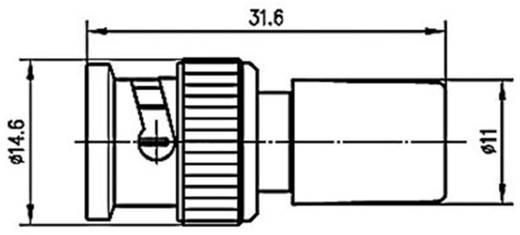 Abschlusswiderstand Telegärtner J01006A1373 1 St.