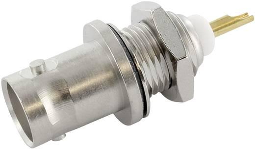BNC-Steckverbinder Buchse, Einbau vertikal 50 Ω Telegärtner J01001A0614 1 St.
